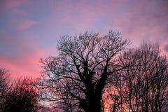 Ζωηρόχρωμος ανατολικό Λονδίνο Ηνωμένο Βασίλειο ουρανός στοκ φωτογραφία με δικαίωμα ελεύθερης χρήσης