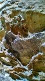ζωηρόχρωμος βράχος Στοκ φωτογραφία με δικαίωμα ελεύθερης χρήσης