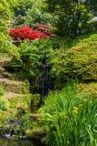 Ζωηρόχρωμος βρετανικός κήπος κάστρων στο Σάσσεξ, Αγγλία Στοκ Εικόνες
