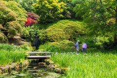 Ζωηρόχρωμος βρετανικός κήπος κάστρων στο Σάσσεξ, Αγγλία Στοκ φωτογραφίες με δικαίωμα ελεύθερης χρήσης