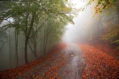 Ζωηρόχρωμος δρόμος φθινοπώρου Στοκ εικόνες με δικαίωμα ελεύθερης χρήσης