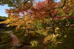 Ζωηρόχρωμος ιαπωνικός κήπος Ginkaku-ginkaku-ji στο ναό Κιότο κατά τη διάρκεια του ηλιοβασιλέματος στην εποχή φθινοπώρου Στοκ εικόνες με δικαίωμα ελεύθερης χρήσης