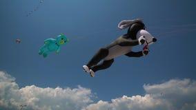 Ζωηρόχρωμος ικτίνος που πετά ενάντια σε έναν μπλε ουρανό και έναν ήλιο φιλμ μικρού μήκους