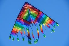 Ζωηρόχρωμος ικτίνος που πετά στον αέρα Στοκ Φωτογραφία