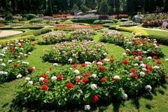 Ζωηρόχρωμος κήπος λουλουδιών στη Mae Fah Luang, Chiang Rai, Ταϊλάνδη Στοκ Φωτογραφία