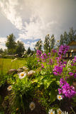 ζωηρόχρωμος κήπος λουλ&om Στοκ Φωτογραφίες
