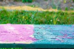 Ζωηρόχρωμος πάγκος στο πράσινο υπόβαθρο λιβαδιών Στοκ εικόνες με δικαίωμα ελεύθερης χρήσης