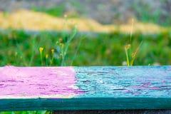Ζωηρόχρωμος πάγκος στο πράσινο υπόβαθρο λιβαδιών Στοκ φωτογραφία με δικαίωμα ελεύθερης χρήσης