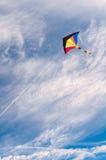 ζωηρόχρωμος πετώντας ικτίν Στοκ Φωτογραφία