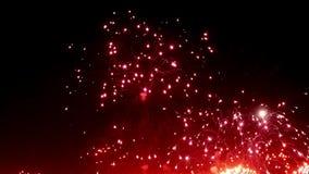 Ζωηρόχρωμος πολύχρωμος επίδειξης πυροτεχνημάτων τη νύχτα στο μαύρο υπόβαθρο φιλμ μικρού μήκους