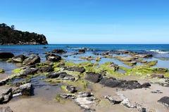 Ζωηρόχρωμος σκόπελος σε μια ηλιόλουστη ημέρα, cefalu, seascape στοκ φωτογραφίες με δικαίωμα ελεύθερης χρήσης