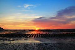 Ζωηρόχρωμος του αγροκτήματος στρειδιών με το ηλιοβασίλεμα και την αντανάκλαση Στοκ εικόνες με δικαίωμα ελεύθερης χρήσης