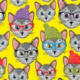 Ζωηρόχρωμο άνευ ραφής σχέδιο με τις γάτες στα καπέλα και τα γυαλιά Στοκ Φωτογραφίες
