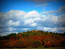 ζωηρόχρωμο δάσος φθινοπώρου Στοκ φωτογραφίες με δικαίωμα ελεύθερης χρήσης