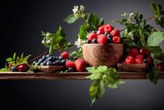 Ζωηρόχρωμο ανάμεικτο μίγμα κινηματογραφήσεων σε πρώτο πλάνο μούρων της φράουλας, του βακκινίου, του σμέουρου και του γλυκού κερασ στοκ εικόνα με δικαίωμα ελεύθερης χρήσης
