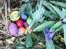 Ζωηρόχρωμο αυγό Πάσχας με τα πράσινα laves στοκ φωτογραφίες με δικαίωμα ελεύθερης χρήσης