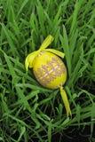 ζωηρόχρωμο αυγό Πάσχας πο&ups Στοκ φωτογραφίες με δικαίωμα ελεύθερης χρήσης