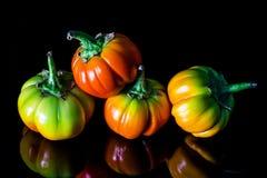 Ζωηρόχρωμο λαχανικό μελιτζάνας Στοκ φωτογραφίες με δικαίωμα ελεύθερης χρήσης