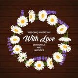 Ζωηρόχρωμο γαμήλιο στεφάνι με lavender και chamomile Διανυσματική floral συλλογή Στοκ Εικόνες