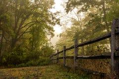ζωηρόχρωμο δασικό τοπίο φύλλων φθινοπώρου Στοκ φωτογραφία με δικαίωμα ελεύθερης χρήσης
