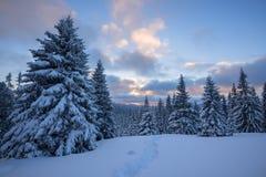 Ζωηρόχρωμο επιπλέον σώμα σύννεφων πέρα από τα χιονισμένους δέντρα και τους λόφους πεύκων Στοκ φωτογραφία με δικαίωμα ελεύθερης χρήσης