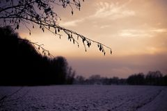 Ζωηρόχρωμο ηλιοβασίλεμα σε έναν χιονώδη τομέα με τα δέντρα στα ευρωπαϊκά όρη μια κρύα ημέρα το χειμώνα στοκ εικόνες