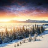 Ζωηρόχρωμο ηλιοβασίλεμα πέρα από τις σειρές βουνών στο εθνικό πάρκο στοκ εικόνες