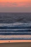 Ζωηρόχρωμο ηλιοβασίλεμα του Όρεγκον στοκ εικόνα