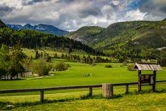 Ζωηρόχρωμο θερινό πρωί στη λίμνη Bohinj στο εθνικό πάρκο Σλοβενία, ιουλιανές Άλπεις, Ευρώπη Triglav Στοκ εικόνα με δικαίωμα ελεύθερης χρήσης