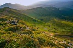 Ζωηρόχρωμο θερινό τοπίο στα Καρπάθια βουνά Στοκ φωτογραφίες με δικαίωμα ελεύθερης χρήσης