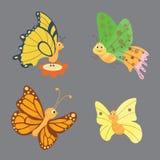Ζωηρόχρωμο διάνυσμα πεταλούδων Στοκ φωτογραφία με δικαίωμα ελεύθερης χρήσης