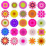 Ζωηρόχρωμο διανυσματικό σύνολο λουλουδιών Στοκ Φωτογραφίες