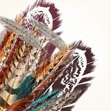 Ζωηρόχρωμο διανυσματικό υπόβαθρο φτερών Στοκ εικόνα με δικαίωμα ελεύθερης χρήσης