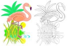 Ζωηρόχρωμο και γραπτό σχέδιο για το χρωματισμό Απεικόνιση του χαριτωμένου φλαμίγκο Φύλλο εργασίας για τα παιδιά και τους ενηλίκου Στοκ Φωτογραφίες