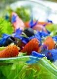 ζωηρόχρωμο καλοκαίρι σαλάτας Στοκ Φωτογραφίες