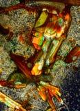 ζωηρόχρωμο κρύσταλλο αν&alpha Στοκ εικόνα με δικαίωμα ελεύθερης χρήσης