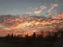 Ζωηρόχρωμο κόκκινο και μπλε ουρανός στοκ φωτογραφία