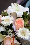 ζωηρόχρωμο λουλούδι ρύθμ Στοκ Εικόνες