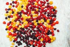 Ζωηρόχρωμο μίγμα των φρούτων στο μαύρο υπόβαθρο επάνω από την όψη Στοκ φωτογραφίες με δικαίωμα ελεύθερης χρήσης