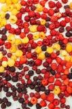 Ζωηρόχρωμο μίγμα των φρούτων στο μαύρο υπόβαθρο επάνω από την όψη Στοκ Εικόνες