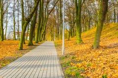 Ζωηρόχρωμο πάρκο πτώσης στη μικρή πόλη στην Πολωνία Στοκ εικόνα με δικαίωμα ελεύθερης χρήσης