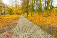 Ζωηρόχρωμο πάρκο πτώσης στη μικρή πόλη στην Πολωνία Στοκ φωτογραφίες με δικαίωμα ελεύθερης χρήσης
