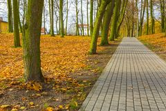 Ζωηρόχρωμο πάρκο πτώσης στη μικρή πόλη στην Πολωνία Στοκ Εικόνες