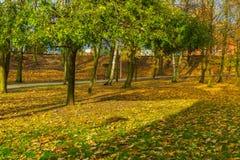 Ζωηρόχρωμο πάρκο πτώσης στη μικρή πόλη στην Πολωνία Στοκ εικόνες με δικαίωμα ελεύθερης χρήσης