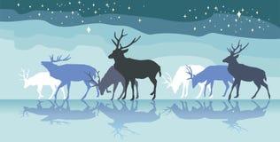 Ζωηρόχρωμο πανόραμα με το περπάτημα της σκιαγραφίας θηλυκών deers με το REF Στοκ φωτογραφία με δικαίωμα ελεύθερης χρήσης