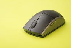 ζωηρόχρωμο ποντίκι Στοκ φωτογραφία με δικαίωμα ελεύθερης χρήσης