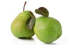 ζωηρόχρωμο πράσινο αχλάδι στοκ φωτογραφία