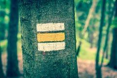 Ζωηρόχρωμο σημάδι ή σημάδι τουριστών στο δέντρο - αναδρομικό ύφος Στοκ φωτογραφία με δικαίωμα ελεύθερης χρήσης