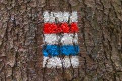 Ζωηρόχρωμο σημάδι ή σημάδι τουριστών στο δέντρο Στοκ φωτογραφία με δικαίωμα ελεύθερης χρήσης