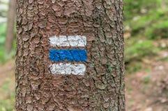 Ζωηρόχρωμο σημάδι ή σημάδι τουριστών στο δέντρο Στοκ εικόνες με δικαίωμα ελεύθερης χρήσης
